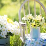 summer allergy relief